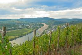 Mosel-Entertainment
