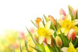 Schnäppchentage im Frühling